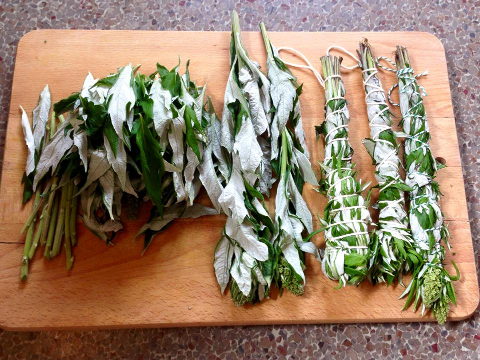 Drying Herbs and Tea Blends