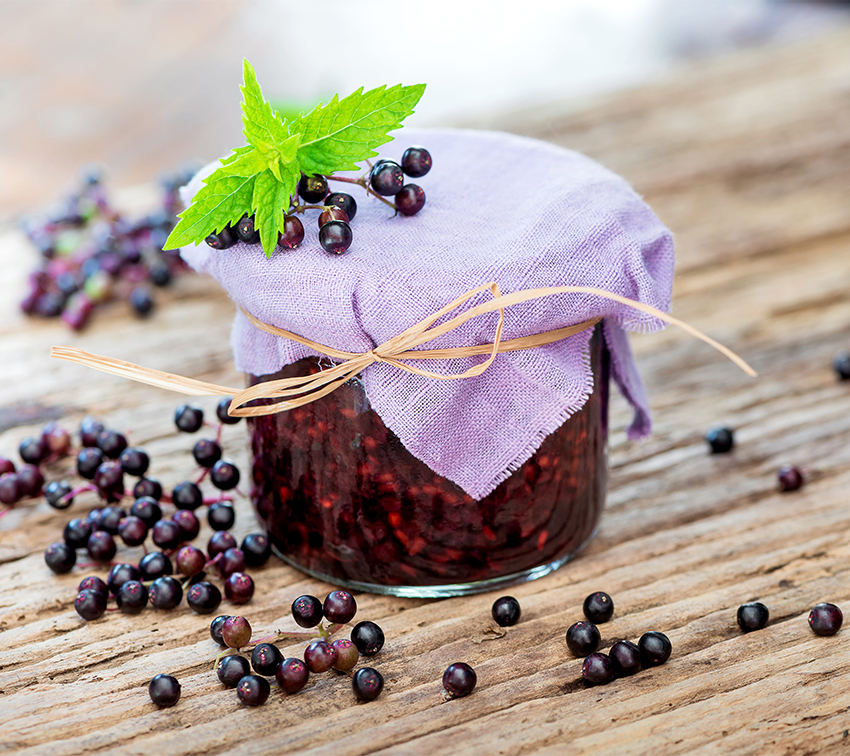 elderberry uses herbal remedies all natural web