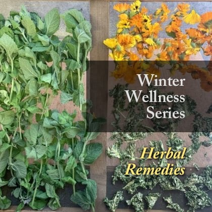 Herbal Care for Colds and Flus