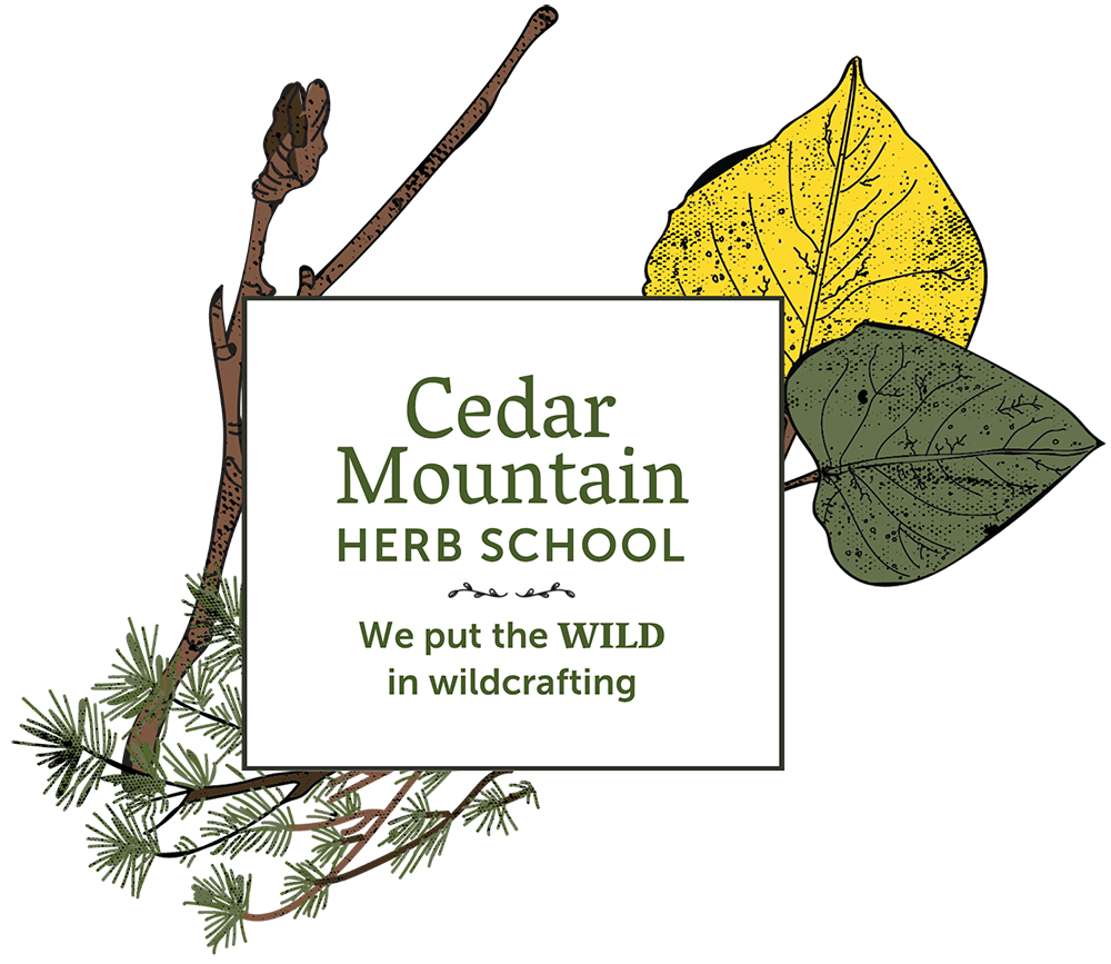 cedar mountain herb school and herbal classes